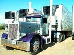 Purple Peterbilt 379