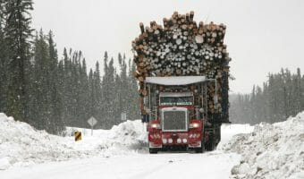 red-peterbilt-logging-truck