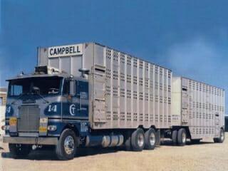 White-Freightliner Cabover