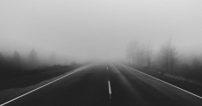 Fog along highway