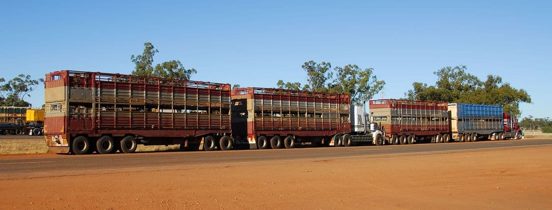 road train in australia crossing a outback country road with reddish or dusty scene