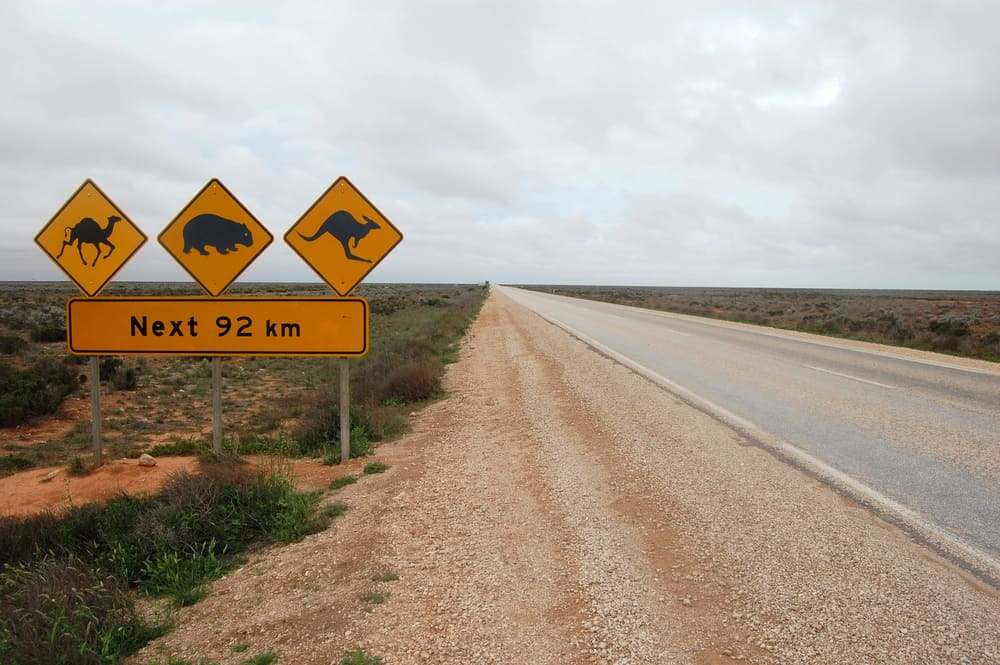 Road sign in Australia, Nullarbour Plain